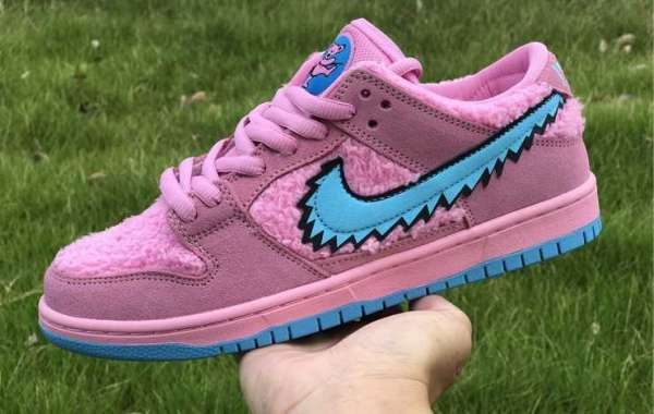 Are you looking for this Nike Dunk Low Plum 2020?